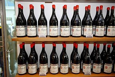 Barolo, wine production, Borgogno, Piedmont, Italy, Europe