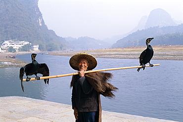 Cormorant Fisherman with birds on fishing pole, Li River, Guilin, Yangshou, Guangxi Province, China, Asia