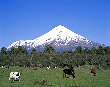 Mount Egmont (Mount Taranaki), Egmont National Park, Taranaki, North Island, New Zealand, Pacific
