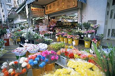 Mong Kok Flower Market, Hong Kong, China, Asia