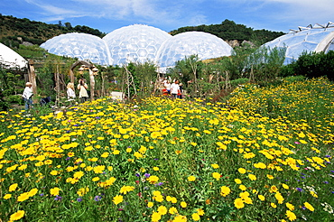 The Eden Project, St. Austell, Cornwall, England, United Kingdom, Europe