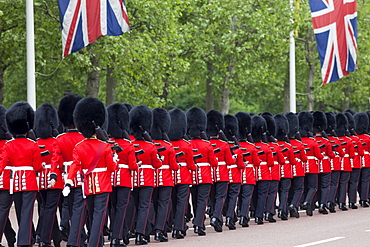Changing of the Guard, London, England, United Kingdom, Europe