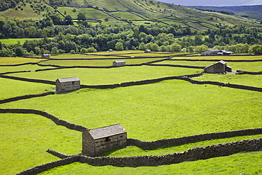 Swaledale, Yorkshire Dales National Park, Yorkshire, England, United Kingdom, Europe