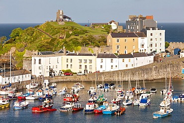 Tenby Harbour, Tenby, Pembrokeshire, Wales, United Kingdom, Europe