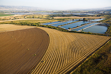 Aerial agriculture fields of the Jordan valley, Israel