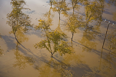 Aerial photograph of a swamp in the Sharon, Israel