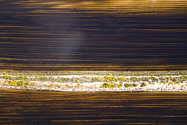 Abstract view of an agriculture field in the Plain, Israel