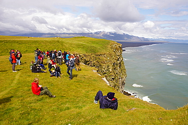 Tourists looking the colonies of puffins nests in the cliffs of Vik, Iceland, Polar Regions
