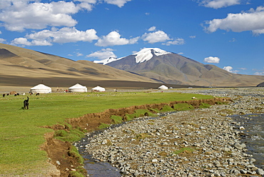 Nomad Kazakh family and yurts, Region of Bayan Ulgii, Mongolia, Central Asia, Asia