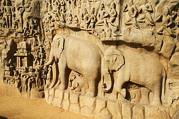 Arjuna's Penance granite carvings, Mamallapuram (Mahabalipuram), UNESCO World Heritage Site, Tamil Nadu, India, Asia