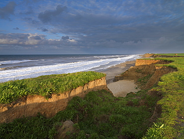 The heavily eroded cliffs at Happisburgh, Norfolk, England, United Kingdom, Europe