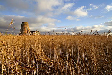The remains of the 14th century St. Benet's Abbey and the windmill built within its walls near Ludham, Norfolk, England, United Kingdom, Europe