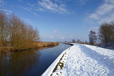A winter scene at Rockland Dyke in the Norfolk Broads, Norfolk, England, United Kingdom, Europe