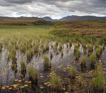 A view towards the Coigach mountains across Loch Garvie, Ross and Cromarty, Highlands, Scotland, United Kingdom, Europe