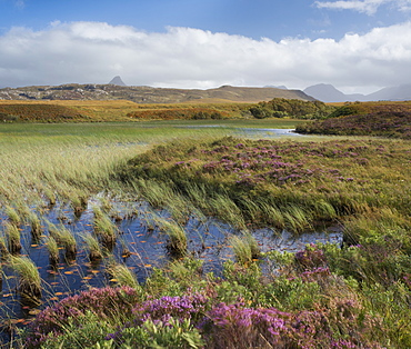 A view towards the mountains of Assynt and Coigach from Loch Garvie, Ross and Cromarty, Highlands, Scotland, United Kingdom, Europe