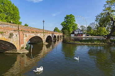 Footbridge over River Avon and ferris wheel, Stratford upon Avon, Warwickshire, England, United Kingdom, Europe