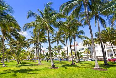 Ocean Drive and Art Deco architecture looking through palm trees, Miami Beach, Miami, Florida, United States of America, North America