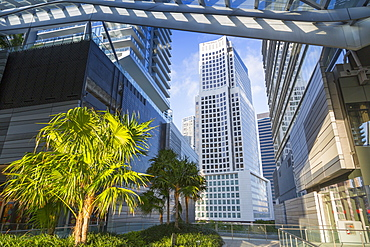 View from Brickell City Centre shopping mall in Downtown Miami, Miami, Florida, United States of America, North America