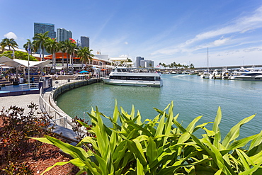 Harbour in the Bayside Marketplace in Downtown, Miami, Florida, United States of America, North America