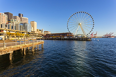Seattle Great wheel on Pier 57 during the golden hour before sunset, Alaskan Way, Downtown, Seattle, Washington State, United States of America, North America