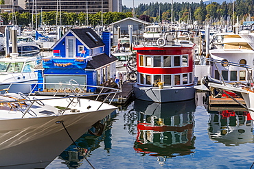 Colourful boats in Vancouver Harbour near the Convention Centre, Vancouver, British Columbia, Canada, North America