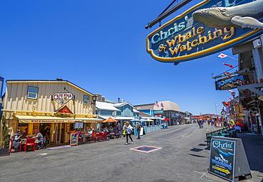Shops on Fisherman's Wharf pier, Monterey Bay, Peninsula, Monterey, California, United States of America, North America