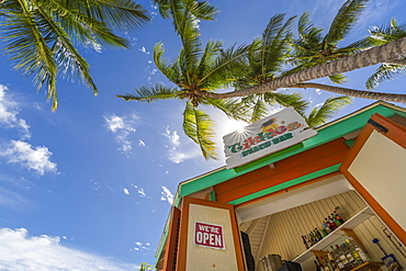 View of palm tree and beach bar on Worthing Beach, Barbados, West Indies, Caribbean, Central America