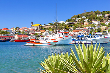 View over the Carenage of St. George's, Grenada, Windward Islands, West Indies, Caribbean, Central America