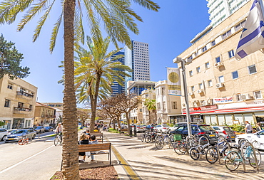 View of palm trees and walkway on Rothschild Boulevard, Tel Aviv, Israel, Middle East