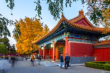 View of autumn colours and souvenir shop in Jingshan Park at dusk, Xicheng, Beijing, People's Republic of China, Asia