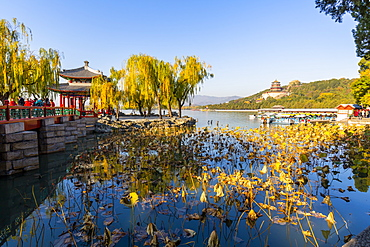 View of Kumning Lake and The Summer Palace, UNESCO World Heritage Site, Beijing, People's Republic of China, Asia