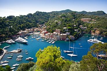 View of Harbour from Castle, Portofino, Genova (Genoa), Liguria, Italy, Europe