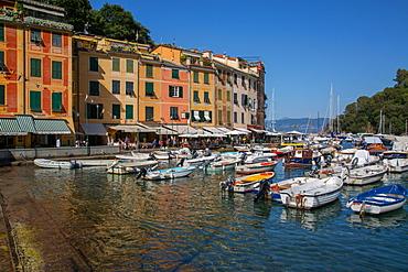 Harbour, Portofino, Genova (Genoa), Liguria, Italy, Europe