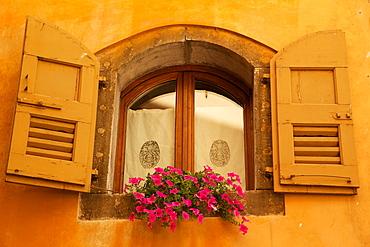 Shuttered window and flowers, Piazza Mercato, Belluno, Province of Belluno, Veneto, Italy, Europe