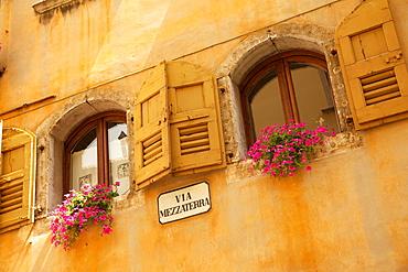 Shuttered windows and flowers, Piazza Mercato, Belluno, Province of Belluno, Veneto, Italy, Europe