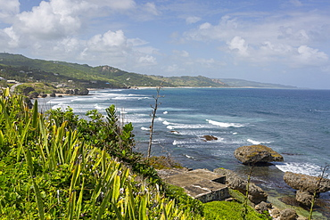 Bathsheba, St. Joseph, Barbados, West Indies, Caribbean, Central America