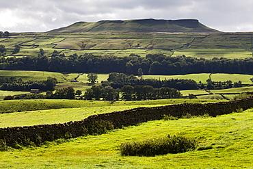 Addlebrough from Askrigg in Wensleydale, Yorkshire Dales, North Yorkshire, Yorkshire, England, United Kingdom, Europe