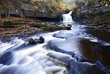 West Burton Waterfall in autumn, Wensleydale, North Yorkshire, England, United Kingdom, Europe