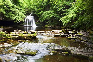 West Burton Waterfall in summer, Wensleydale, Yorkshire Dales, Yorkshire, England, United Kingdom, Europe
