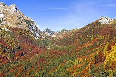Autumn on the slopes of the Vrsic pass in the Julian Alps, Gorenjska, Slovenia, Europe