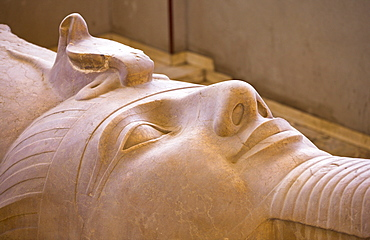 The face of the Colossus of Ramesses II at Memphis, Egypt, North Africa, Africa