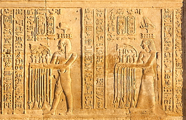 Relief at the twin Temple of Sobek and Haroeris, Kom Ombo, Egypt, North Africa, Africa