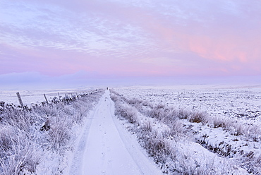 Man walking down a snowy track on a cold winter's day at dawn, Pockstones Moor, North Yorkshire, Yorkshire, England, United Kingdom, Europe