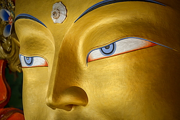 Detail of the statue of the Maitreya (future Buddha) installed to commemorate the visit of the 14th Dalai Lama to the monastery, Thiksey Gompa, Ladakh, Himalayas, India, Asia