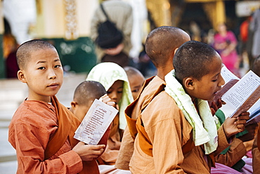 Novice Nuns chanting at Shwedagon Pagoda, Yangon (Rangoon), Myanmar (Burma), Asia