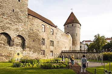 The Old City walls, Old Town, UNESCO World Heritage Site, Tallinn, Estonia, Europe