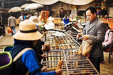 Women bartering over chicken sale at Xinjie Local Market, Yuanyang, Yunnan Province, China, Asia