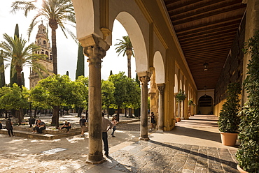 The Great Mosque (Cathedral of Our Lady of the Assumption) (Mezquita) of Cordoba, UNESCO World Heritage Site, Cordoba, Andalucia, Spain, Europe