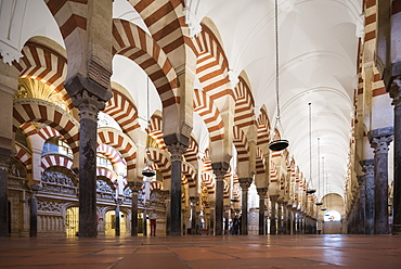 Interior of The Great Mosque (Cathedral of Our Lady of the Assumption) (Mezquita) of Cordoba, UNESCO World Heritage Site, Cordoba, Andalucia, Spain, Europe