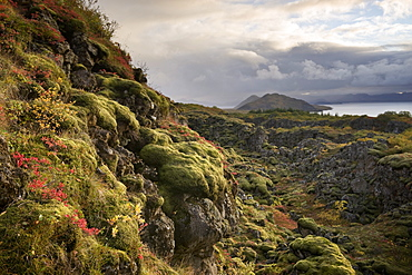 Thingvellir National Park, UNESCO World Heritage Site, Iceland, Polar Regions